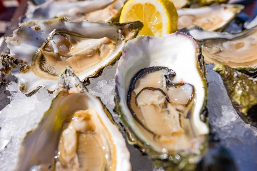 Close up photo of oysters on ice with lemon in Seattle WA, a must-try for seafood lovers during 3 days in Seattle WA