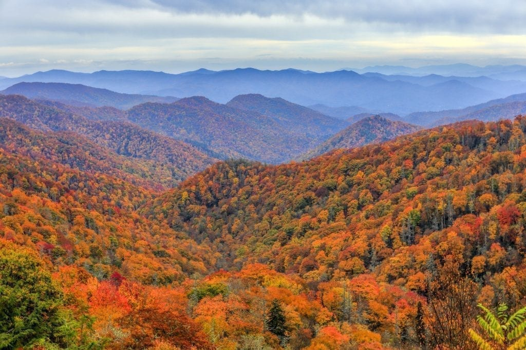 View of the Great Smoky Mountains during fall foliage season in the southern USA