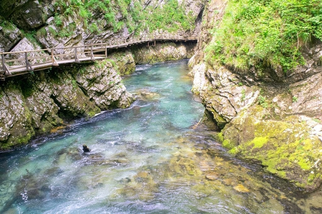 Vintgar Gorge in Slovenia with boardwalks visible on the left side of the photo