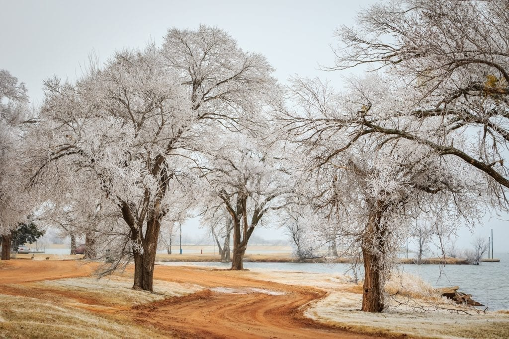 Lake Hefner in OKC after a snowstorm, with icicles in the trees