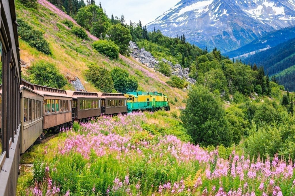 Train along an Alaska mountainside with wildflowers in the foreground and a mountain in the background. Alaska is one of the most beautiful places in the us