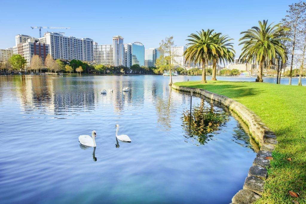 Lake Eola Park in Orlando Florida with swams in the water and a skyline visible in the background. Orlando belongs on a bucket list for the United States