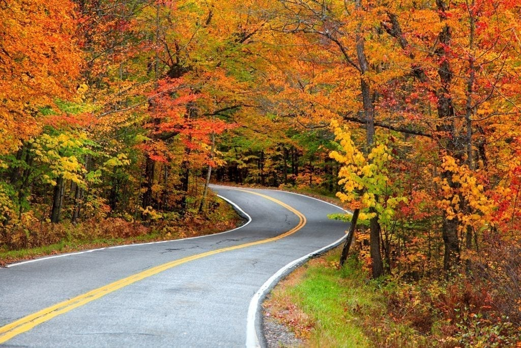 Curving road surrounded by fall foliage in New England, as you'll see during fall road trips from Boston MA!