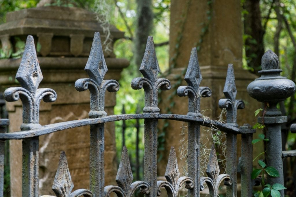 Wrought iron fence in front of a cemetery in Charleston