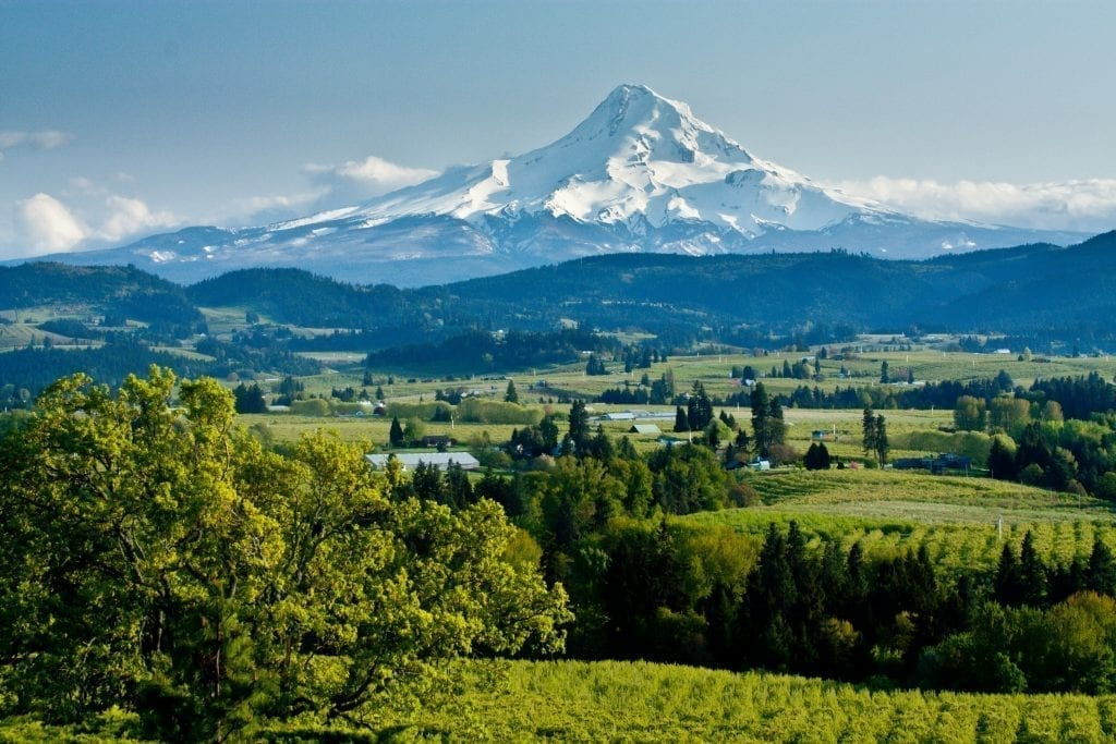 Mount Hood Oregon with wine country in the foreground