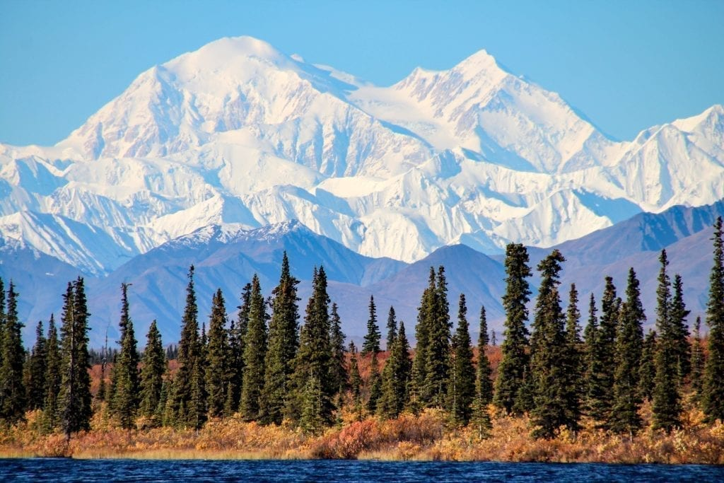 Snowcapped mountain in Denali National Park with evergreen trees in the foreground. Alaska is a bucket list us west coast road trip itinerary