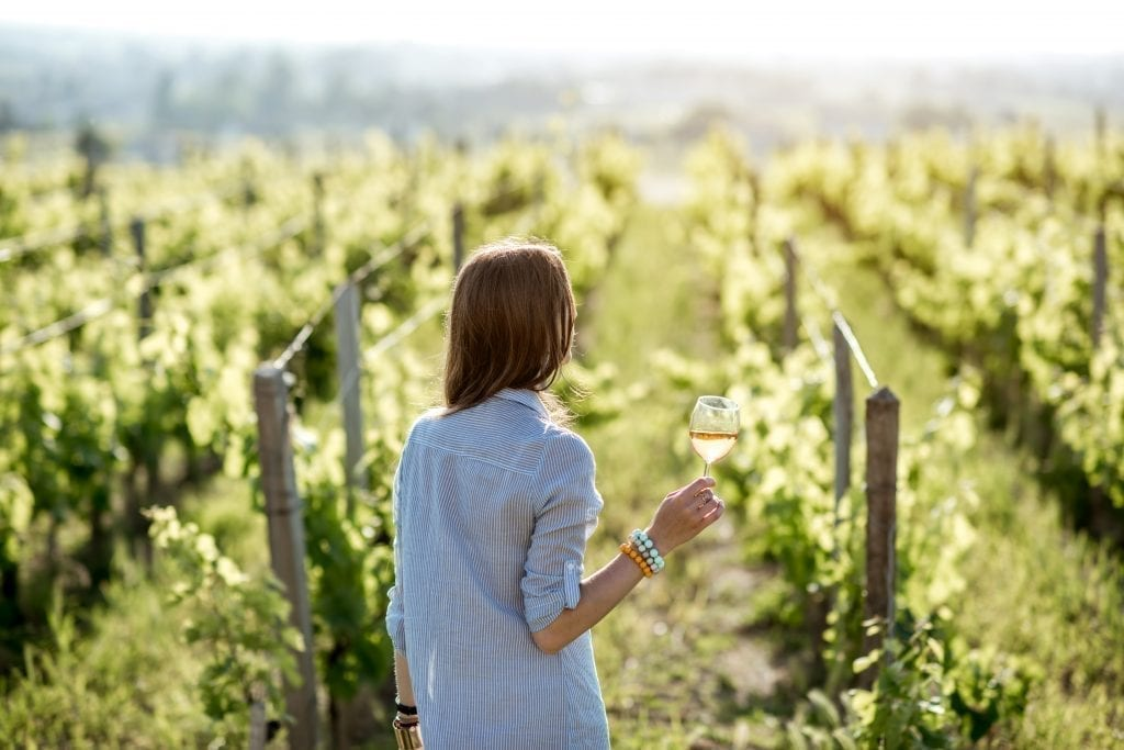 Young woman facing away from the camera holding a wine glass in a French vineyard. Wine tours make for excellent Paris day trips