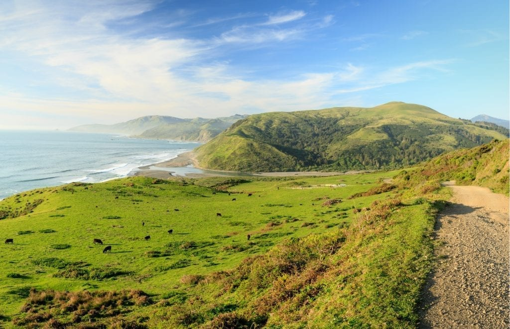 rolling green hills with the ocean in the distance with the pacific ocean in the background on california's lost coast, one of the best us west road trip ideas