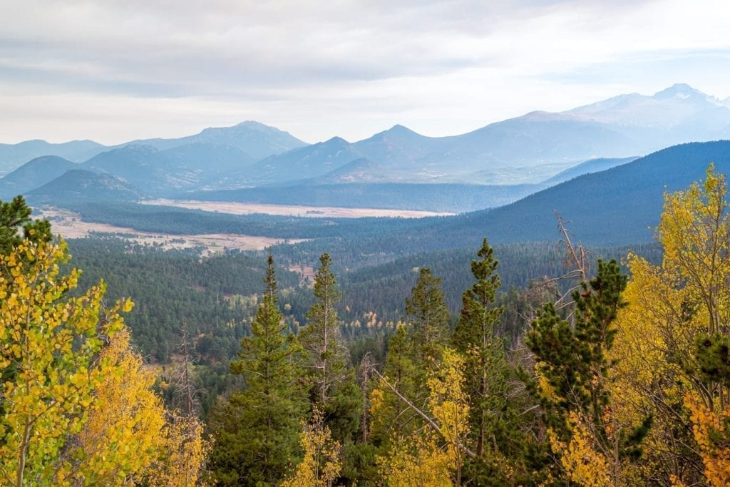 mountain view from trail ridge road in rocky mountain national park with fall foliage in the foreground