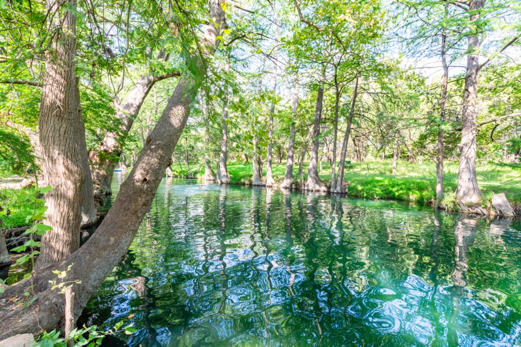 cypress creek blue hole in wimberley texas, one of the best american small towns to visit