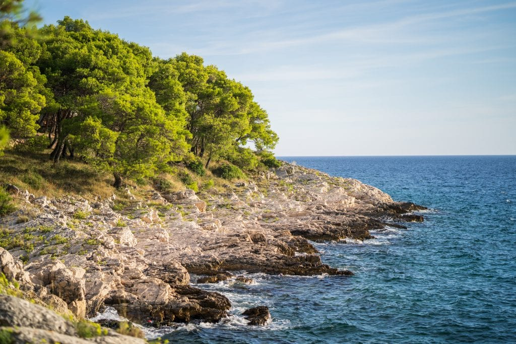 rocky coast of obonjan croatia with trees to the left