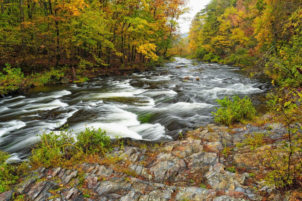 flowing river in beavers bend state park surrounded by fall foliage