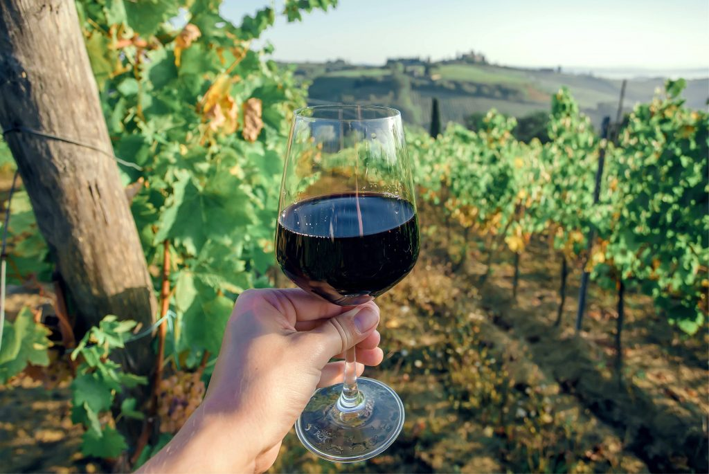 glass of red wine being held up in front of grape vines during a wine tasting in tuscany, a european bucket list travel experience