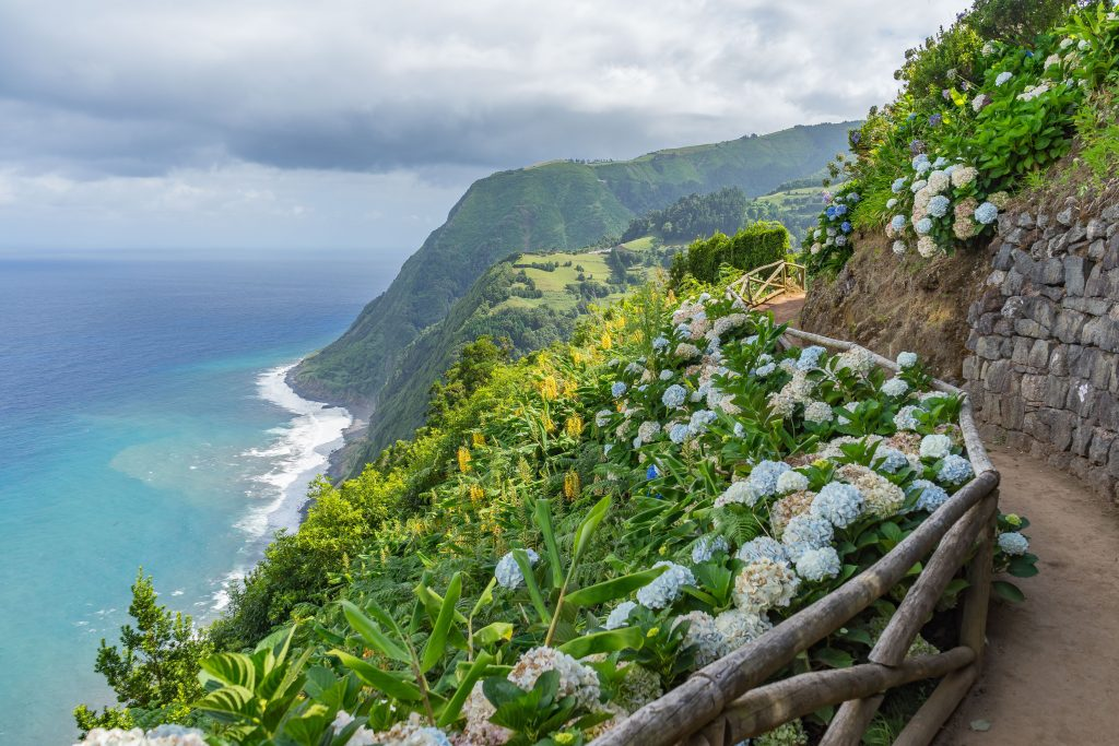 view of cliffside hiking trail in azores lined with hydrangeas. the azores are a europe bucket list destination