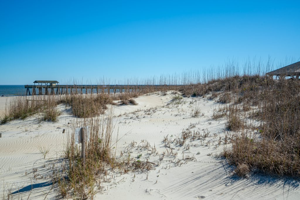 beach of tybee island georgia as seen across the dunes, one of the best savannah day trip ideas