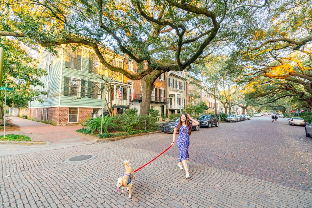 Kate Storm and Ranger Storm on Jones Street, one of the best places to take pictures in savannah ga