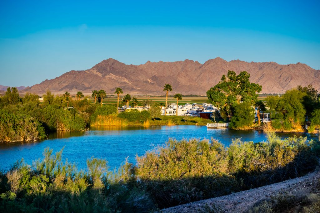 view of a lake in yuma arizona with palm trees in the background, one of the best bucket list arizona travel destinations