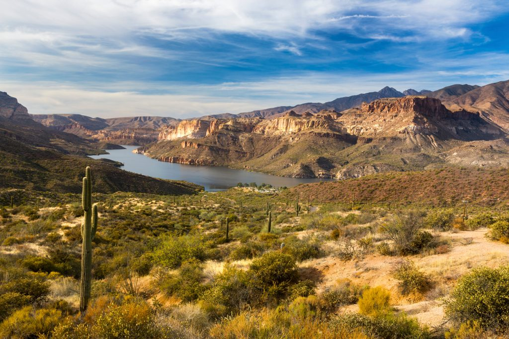 view along the historic apache trail, one of the best places to visit in arizona, with cacti in the foreground and a lake in the background