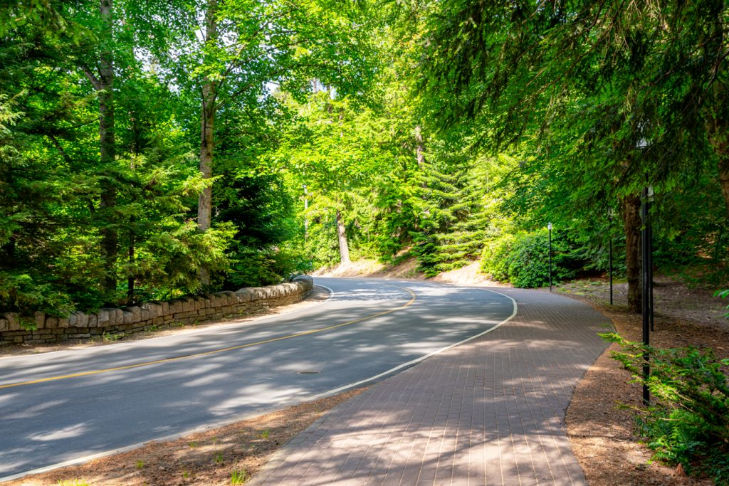 curving approach road as seen when visiting biltmore estate tips