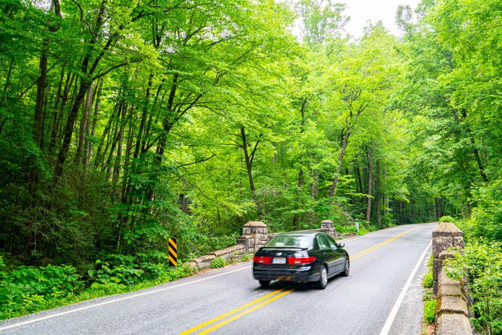 compact car driving through pisgah national forest
