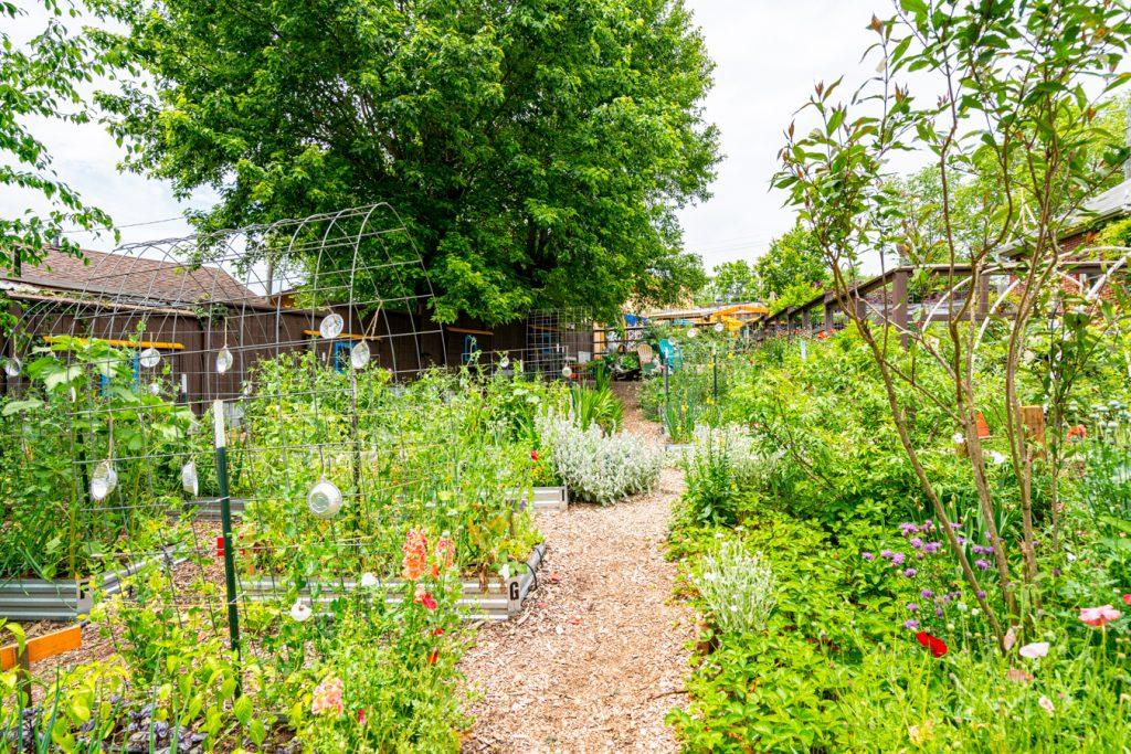 sunny point cafe garden in asheville north carolina