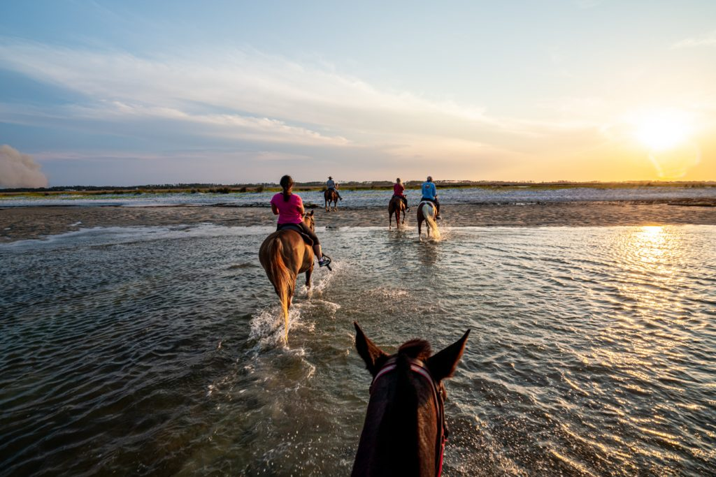 horseback ridge on the beach at sunset cedar island north carolina
