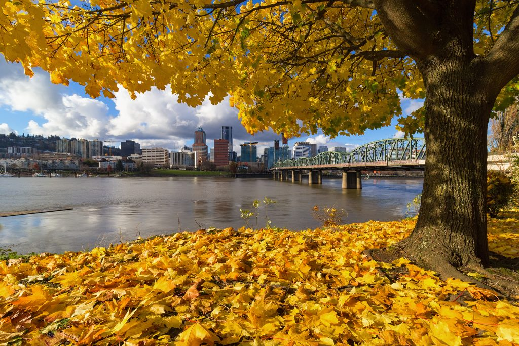 portland oregon skyline with fall foliage in the foreground, november usa vacation spots