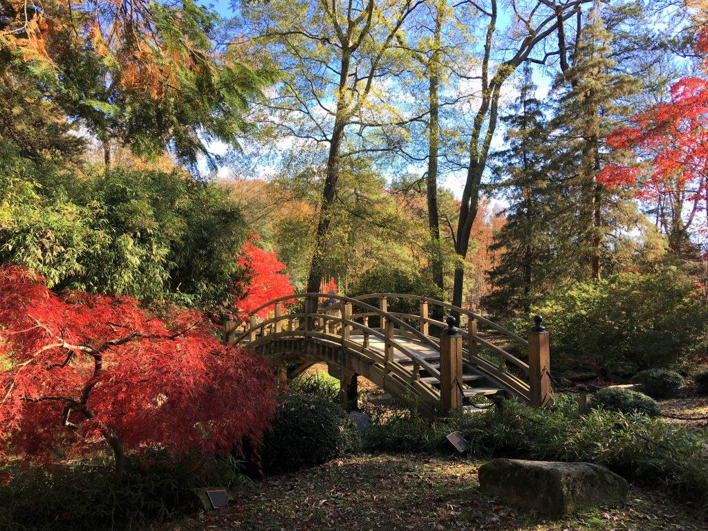 small bridge with fall foliage in richmond virginia