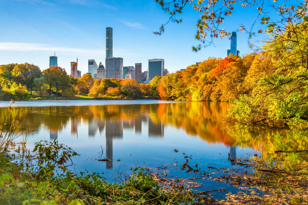 manhattan skyline as seen from central park during fall vacation in usa