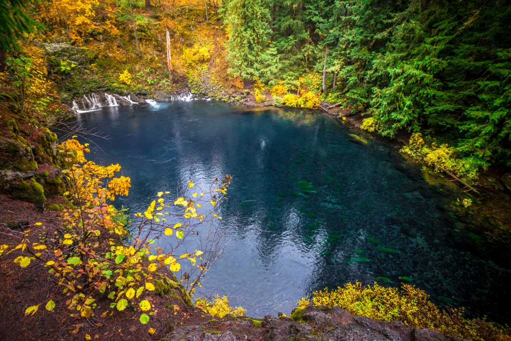 Tamolitch Blue Pool in oregon, as seen during a fall vacation in usa