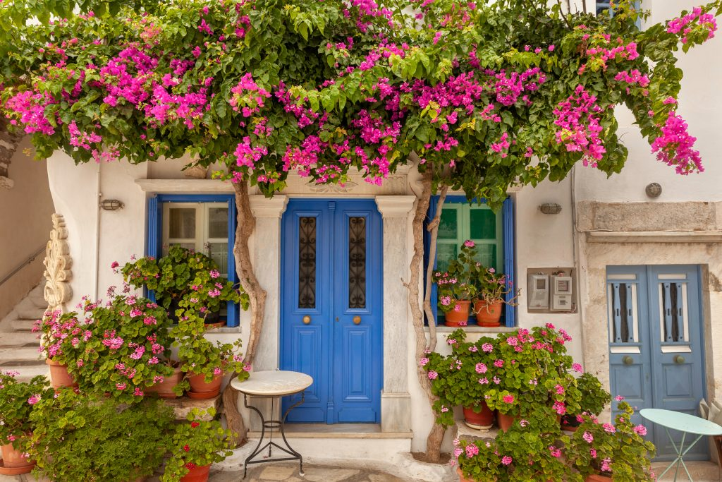 blue doors on a white building surrounded by pink flowers on tinos, a fun stop on a greek island hopping itinerary
