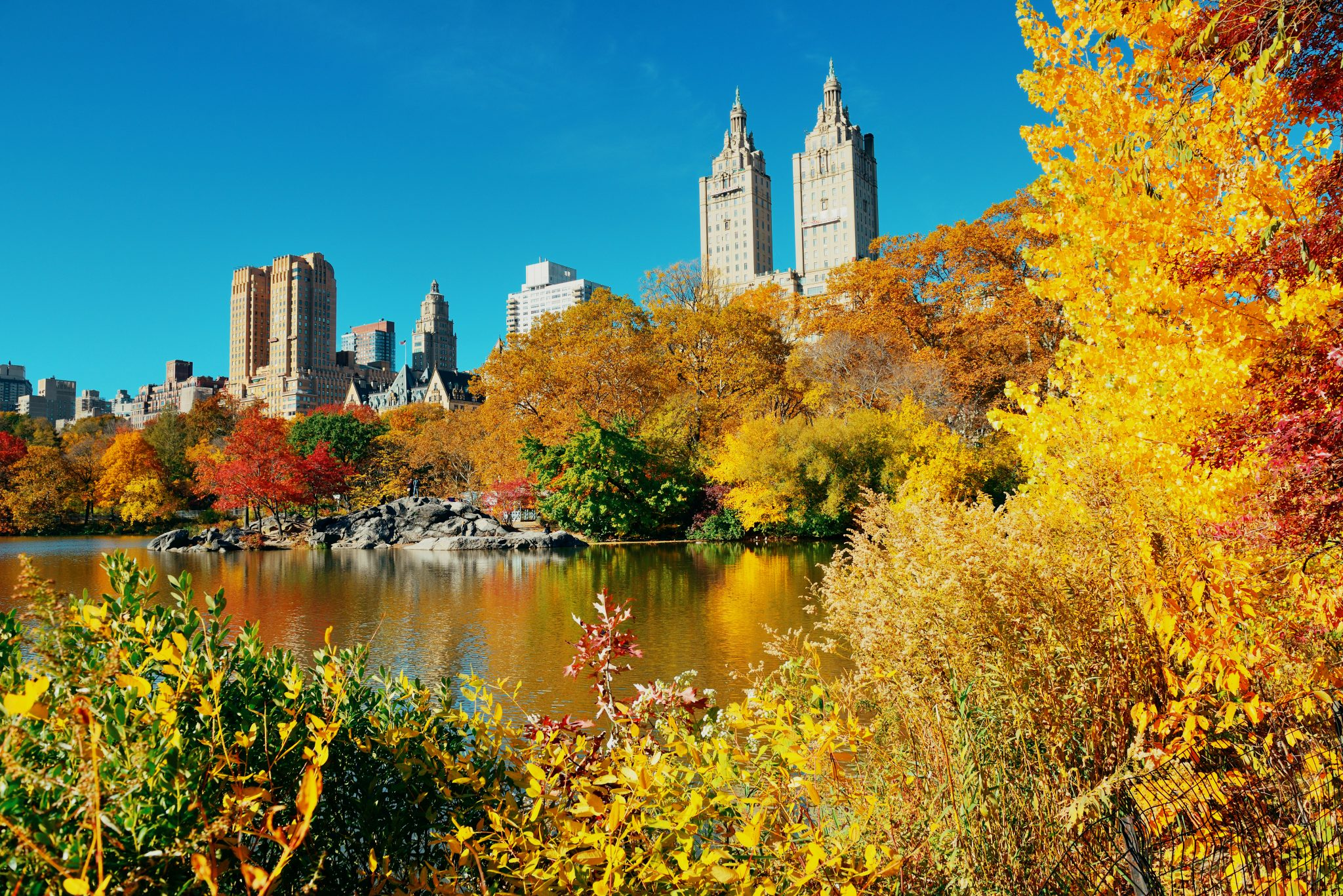 central park with fall foliage, one of the best places to visit in november in usa